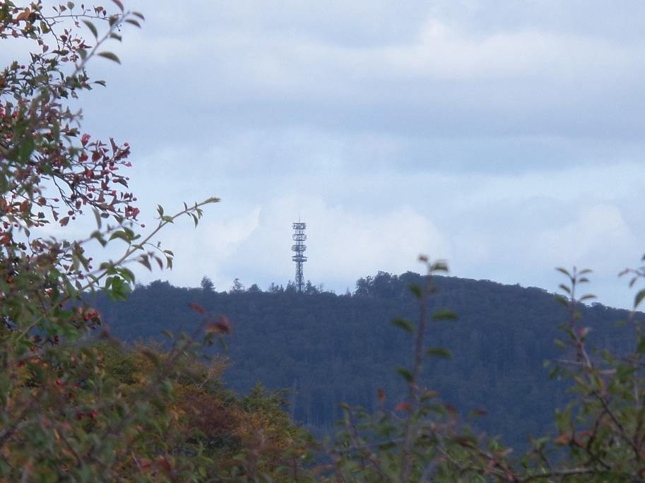Blick zum Bärenberg