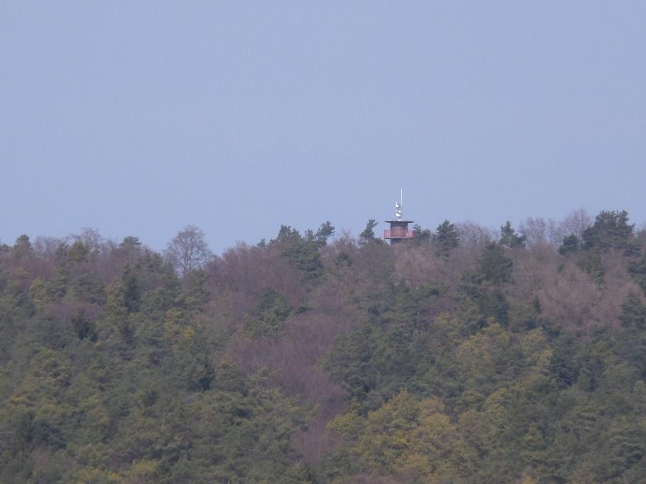 Blick zum Ofenbergturm